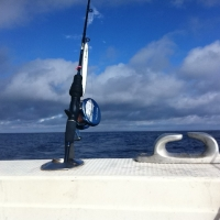 slow pitch jigging okinawa amberjack